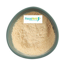 FocusHerb EU & USDA Certified 80% Organic Pea Protein Powder