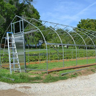 TSX Green House Green Single-span Greenhouse For Vegetables Low Cost 8x30m Green House Frame