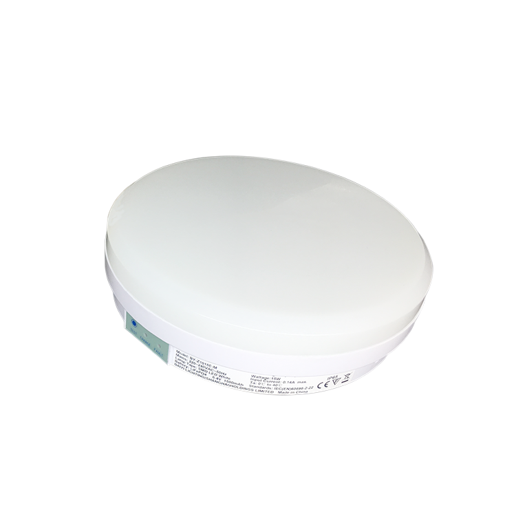 Round Led Light Fixture And Surface Lamp 6500K Ceiling Luminaire
