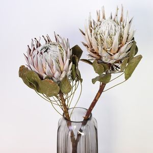 Instagram popular natural dried flowers king protea flower for wedding decoration