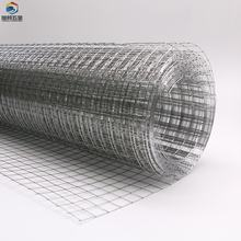 OEM Architecture flat galvanized wire mesh poultry mesh window protection zinc plating welded wire mesh with Anti-corrosion