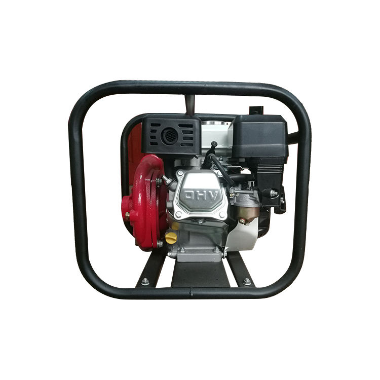WP-15CI Pedestal Water Cast Iron Self-priming Pump With Electric Motor