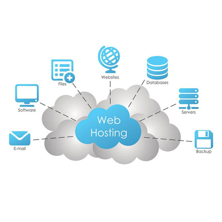 Unlimited Traffic Website Hosting and Domain
