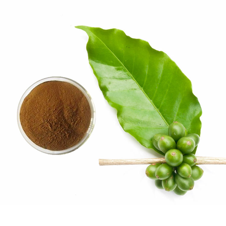 Green Coffee Bean Extract Powder Resist Oxidation Aging and Resist Bone-aging
