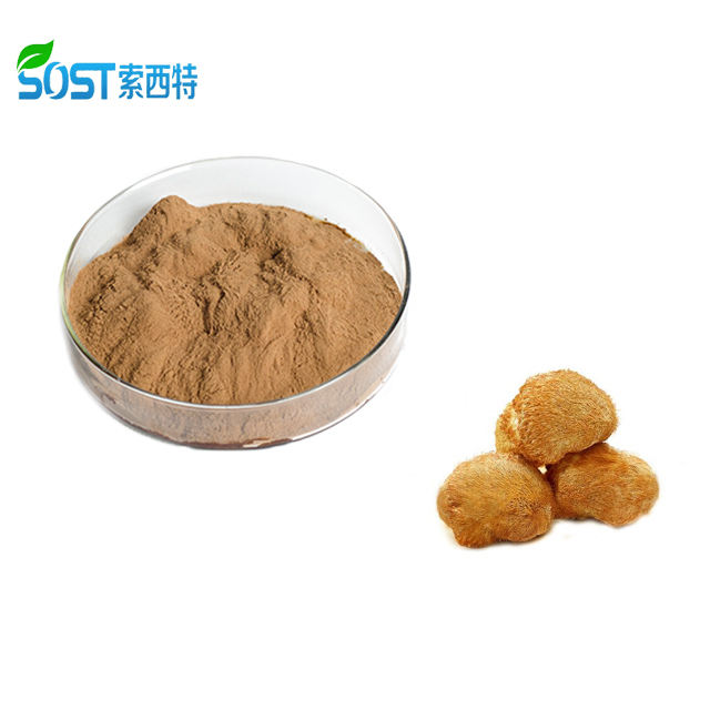 Private Label Organic Lion's Mane Mushroom Extract Powder 50% Polysaccharides