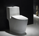 Dual-flush Porcelain One Piece Sanitary Toilet