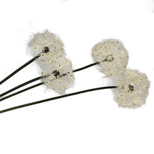 Factory colorful plastic wedding decoration dandelion artificial flower