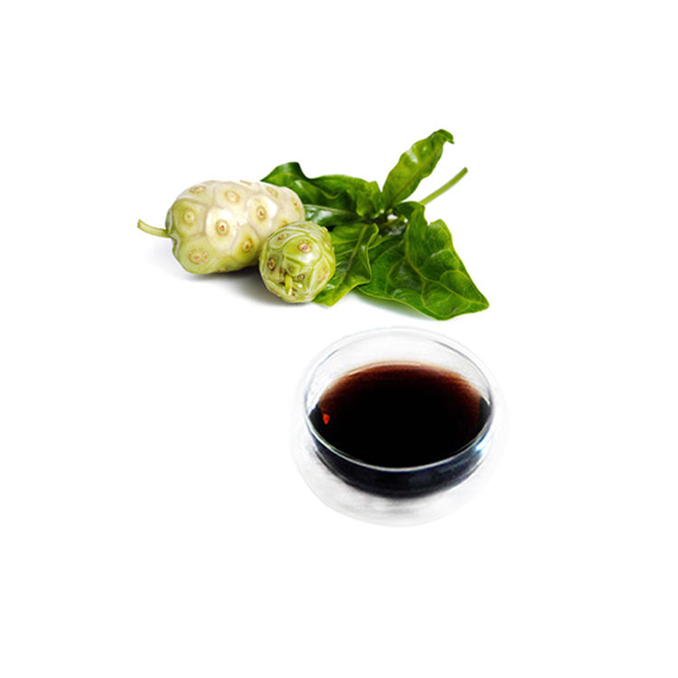 Concentrated juice supplier wholesale Chinese made Noni fruit beverage soft energy drink raw materials