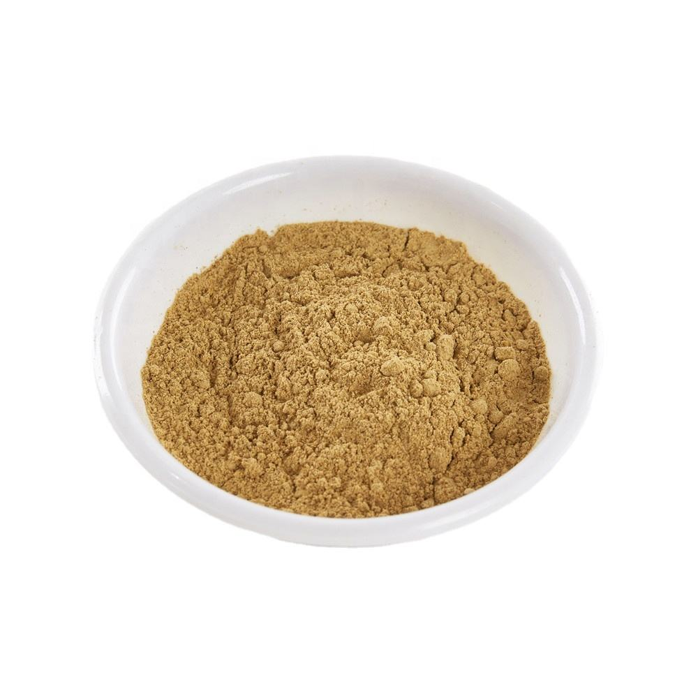 100% Pure Natural Red Panax Ginseng Root Extract Powder Red Panax Ginseng Root Extract Red Panax Ginseng