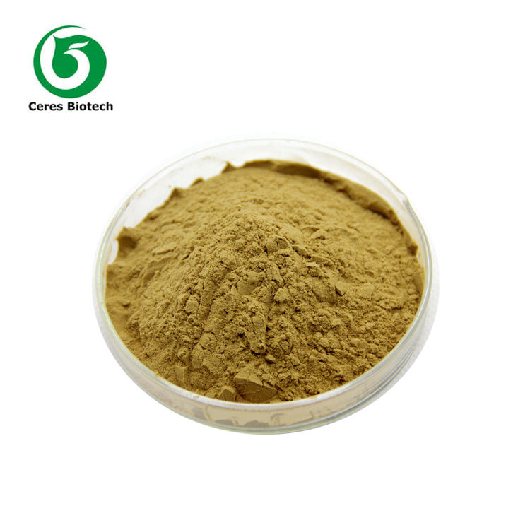Natural Chlorogenic Acid Green Coffee Bean Extract Powder