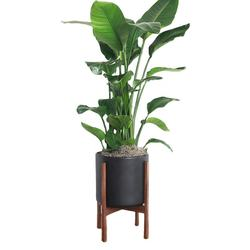 custom indoor outdoor Mid Century plant holder with display stand modern tall flower pot with wood stand