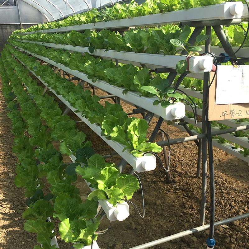 Irrigation Hydroponics Equipment Hydroponic Growing Systems Nft Channel Indoor