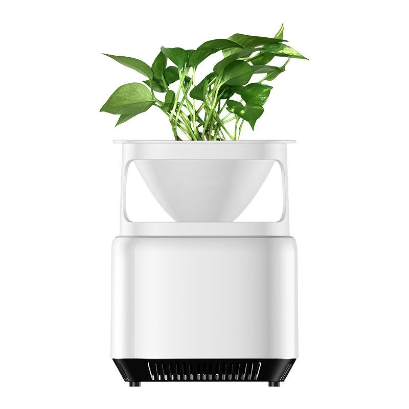 Plant Air Purifier Desktop Removes Airborne Particles Smoke Air Pollutant