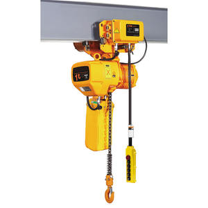 VISION china top sale lifting tools equipment mini small 100kg 600kg electric chain hoist machinery beam trolley crane hoists