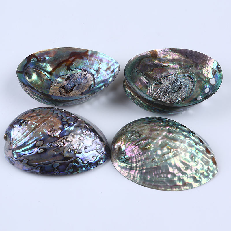 High Polished Flashy Light Raw Material Rainbow Color Seashell Iridescentseashell In Natural Craft Loose Abalone Shell
