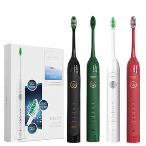 Double Removable Head Led Blue Light Ultrasonic Toothbrush