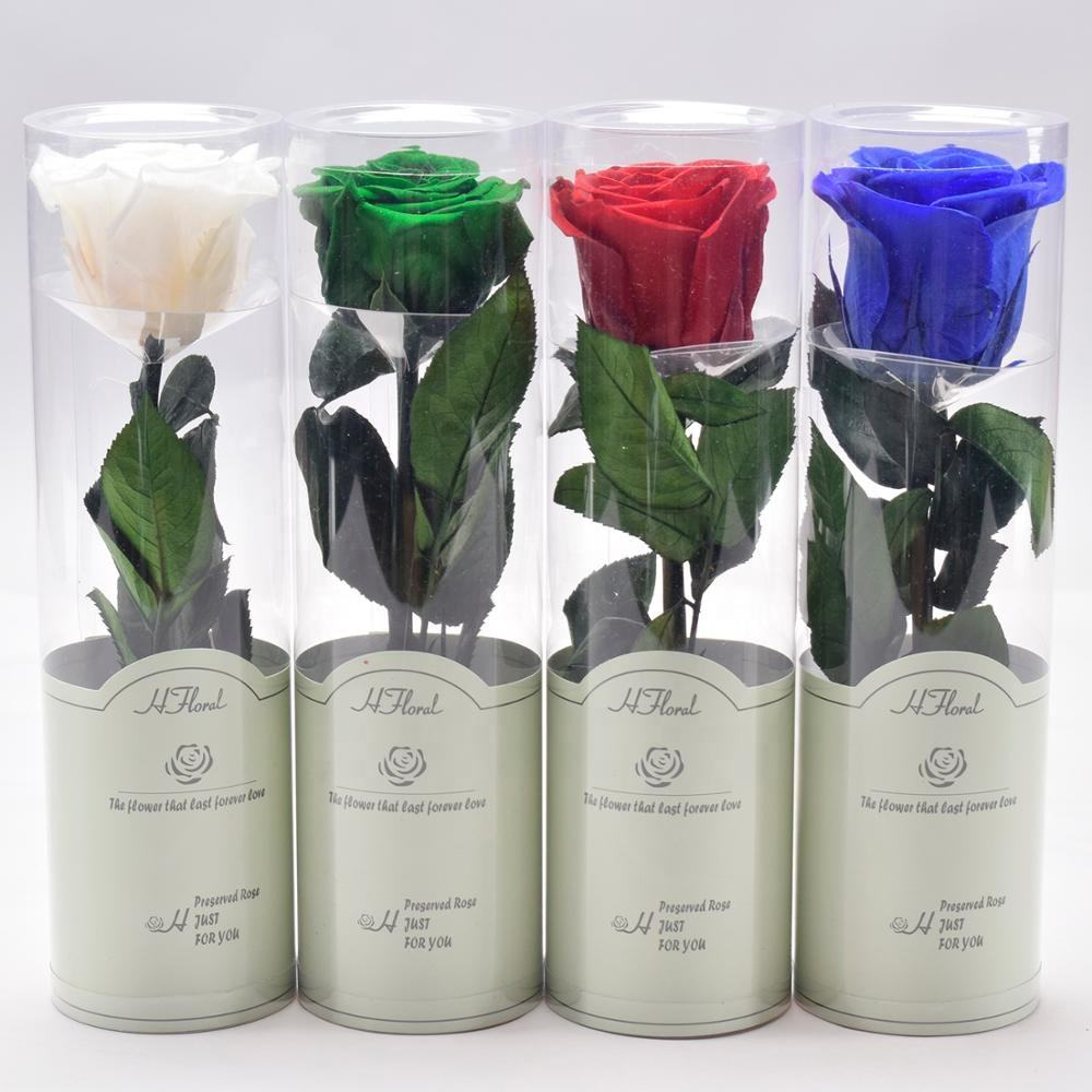 20cm Factory Supply Wholesale Decorative Preserved Rose with Stem/Long Stem Roses for Celebration Wedding Valantine's Day Gift