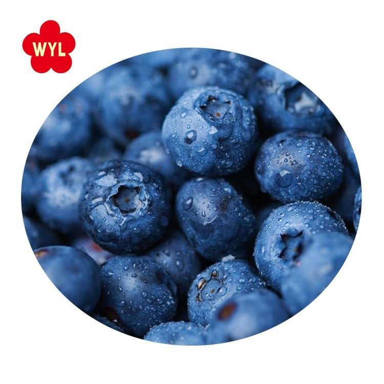 IQF Frozen Blueberry for Wholesales with Best Price and Good Quality