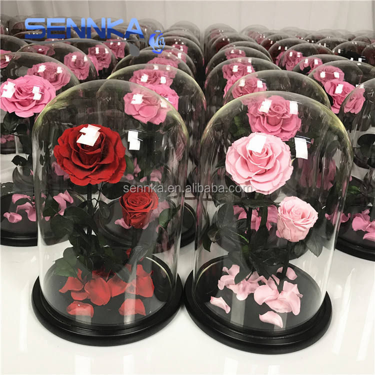 Yunnan Sennka Wholesale Forever Roses Flowers Preserved Roses in Glass Dome