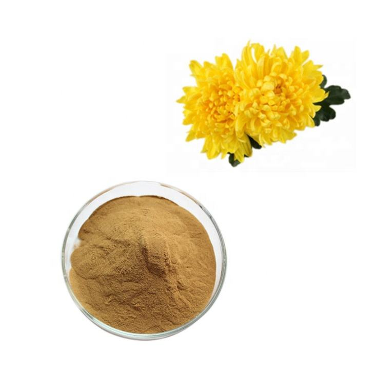 Herbal Extract Organic Instant Chrysanthemum Tea Powder Best Price