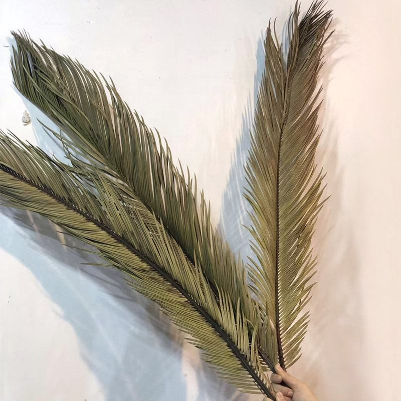 YAYUN A-3057 90センチメートルDried Sago Bycas Preserved Palm Leaves For Event