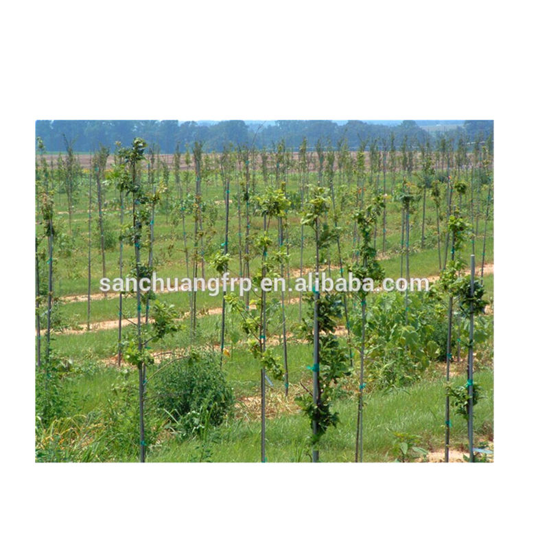 Reusable Round Fiberglass FRP Agricultural Tomato Stakes for Fruit Grape and Cherry Vegetable Tomato Sticks