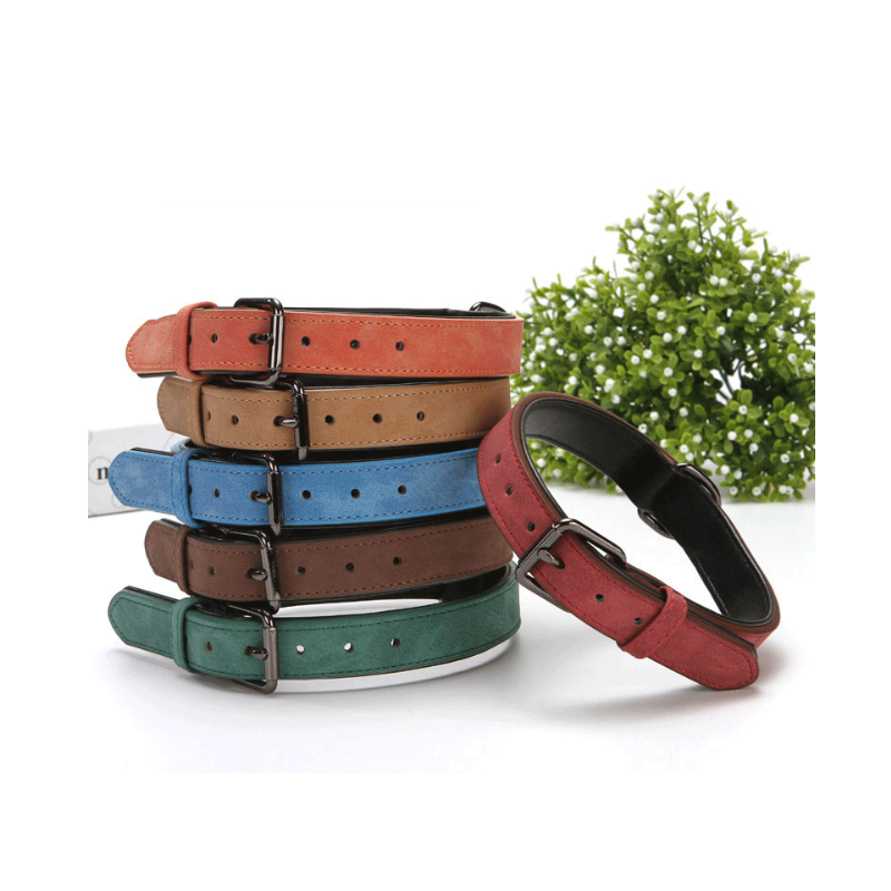 YY Wholesale Custom Leather Soft Dog Training Padded Dog Collar Padded Pet Collars for Cats Puppy collar dog leash leather