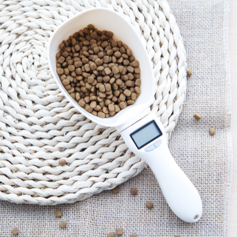 Dropshipping Pet food electronic weighing and measuring spoon