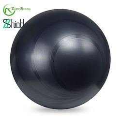 Zhensheng home yoga fitness gym ball REACH level