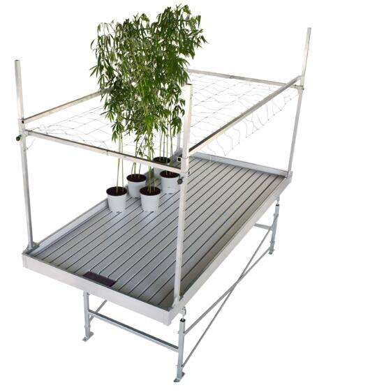 Bench Ebb and Flow Table in Agricultural planting High Performance Greenhouse Rolling Flow Rolling Bench
