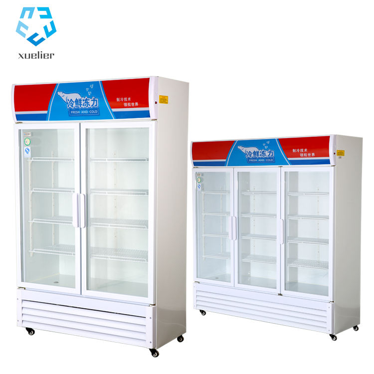 double door commercial upright chiller for frozen food with good quality