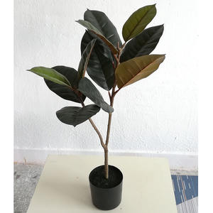 70cm de altura Venta caliente toque real natural Artificial indio árbol ficus plantas para la decoración