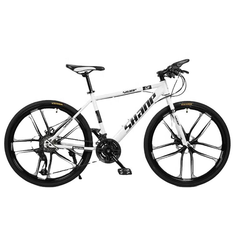 Cheap Hot Sale Cheap Outdoor Mountain Bicycle Popular Mountain Bike For Sale