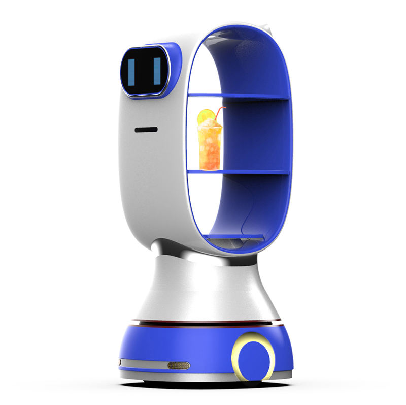 Intelligent food delivery service robot in the catering industry