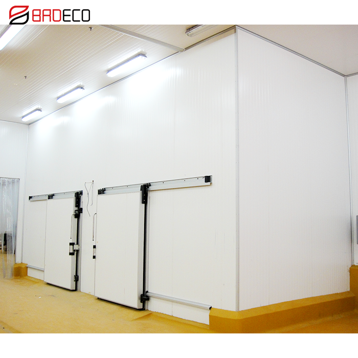 walk in freezer cold room manufacturer