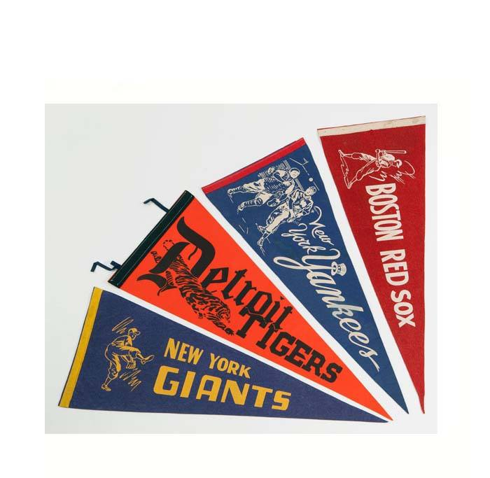 Fabric Printed Triangle Pennant Flag Banner
