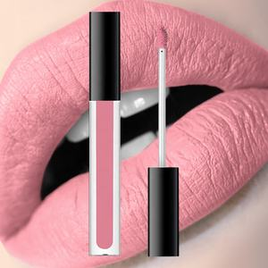 Custom Makeup Fashional Matte Color Lipstick