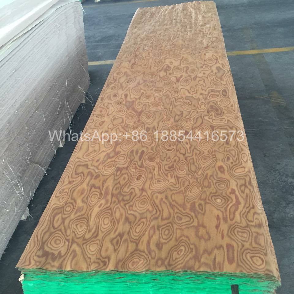 Reconstituted burl Veneer for Decorative Plywood
