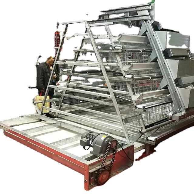 3 Tiers A-frame Complete Auto Layer Chicken Cage System with auto manure removal system