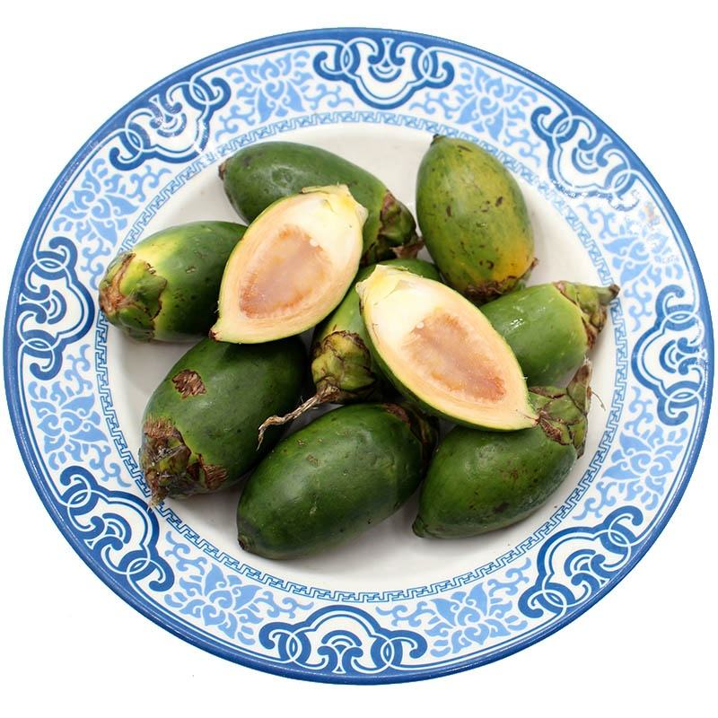 High Quality Betel nut / Areca nut