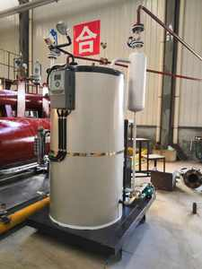 Small Fuel Oil 2# Diesel Fired Steam Generator Boiler 100-500kg of steam per hour