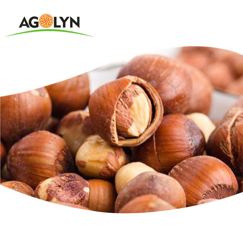AGOLYN Shell Raw Hazelnut Kernels