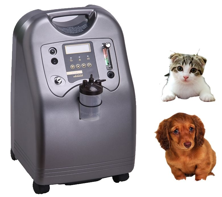 5liter portable oxygen concentrator for medical, homeuse, and beauty