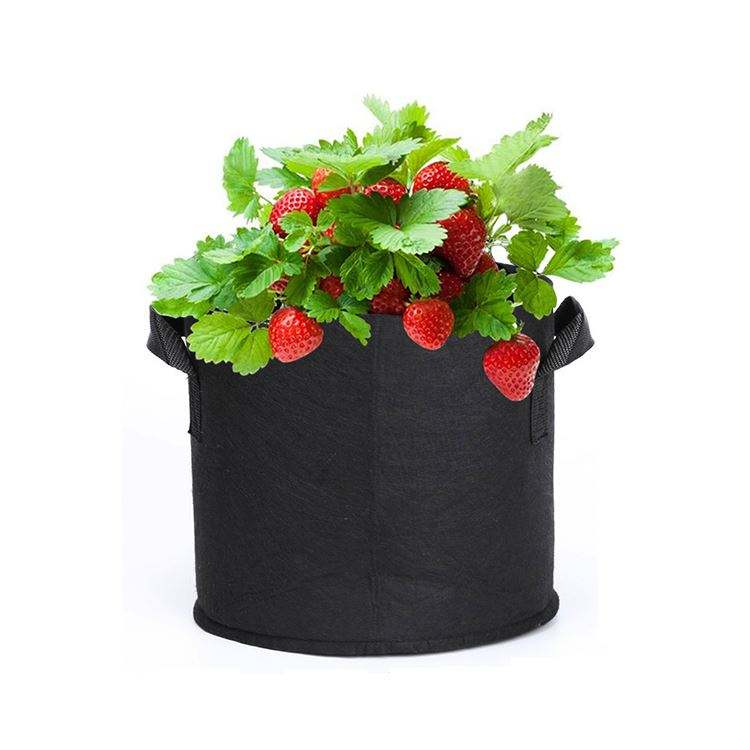 Bags Growing Plastic Pot Soil 7 Gallon Heavy Duty For Plant Bpa Free Felt Big Wall Hydroponic Smart Garden Grow Planter Bag