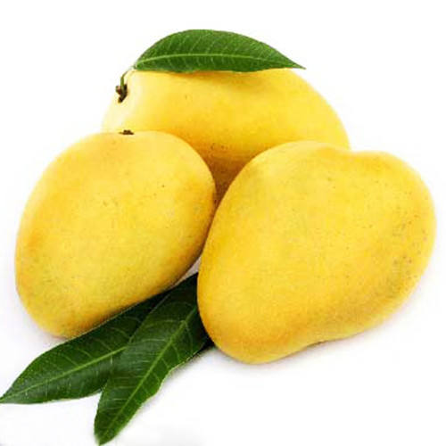 Fresh Mango From Peru wholesale in High Quality