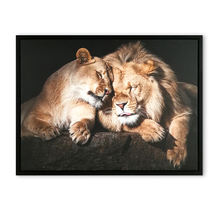 Modern wall art canvas painting wall art animal lion canvas framed picture