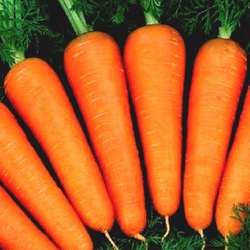 80 -  150 gram for fresh carrot in Viet Nam 2019