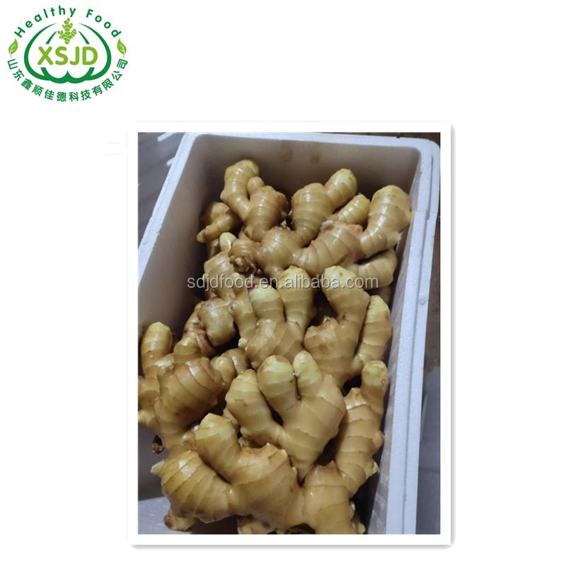 Wholesale Fresh Raw Ginger