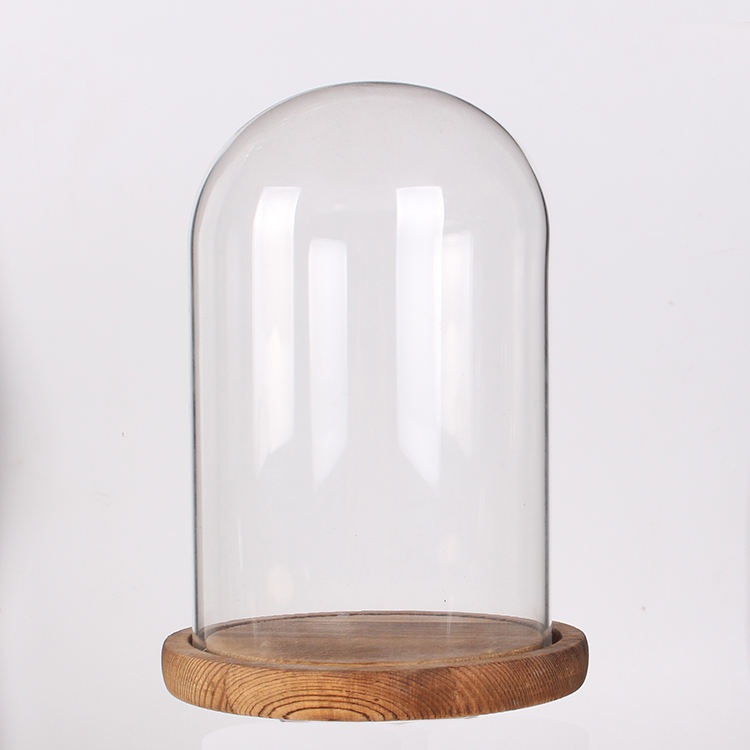 "Siyaglass Glass Dome Bell Jar Cloche with Wood Base Wholesale D12xH18 or D4.7""x D7"""