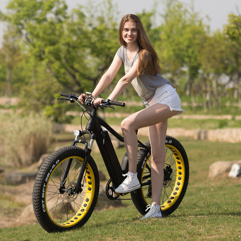 26 inch Electric bike 48v 1000w fat tire e-bicycle